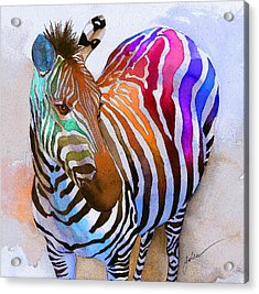 Zebra Dreams Acrylic Print by Galen Hazelhofer