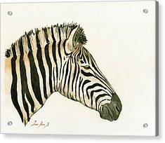 Zebra Head Study Painting Acrylic Print by Juan  Bosco