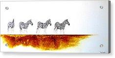 Zebra Landscape - Original Artwork Acrylic Print