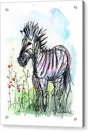Zebra Painting Watercolor Sketch Acrylic Print by Olga Shvartsur
