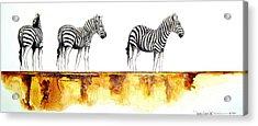 Zebra Trio - Original Artwork Acrylic Print