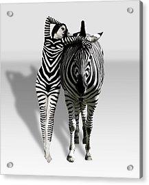 Zebra Woman Acrylic Print by Lloyd Burchell