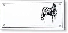 Zebra3 Acrylic Print