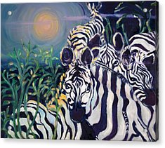 Zebras On The Savanna Acrylic Print