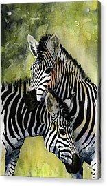 Zebras Acrylic Print by Roger Bonnick