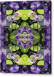 Zen Lilies Acrylic Print by Bell And Todd