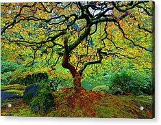 Zentastick Acrylic Print by Jonathan Davison