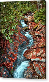Acrylic Print featuring the photograph Zig Zag Mountain Stream by David A Lane