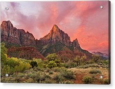 Acrylic Print featuring the photograph Zion Awakens by Expressive Landscapes Fine Art Photography by Thom