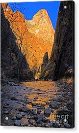 Zion Acrylic Print by Dennis Hammer