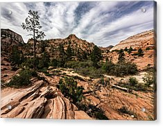 Zion Mountains 4c Acrylic Print by Don Risi