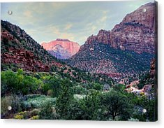 Zion National Park Acrylic Print by Charlotte Schafer