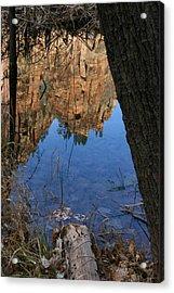 Zion Reflections Acrylic Print