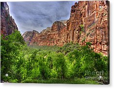 Acrylic Print featuring the photograph Zion View Of Valley With Trees by Dan Friend