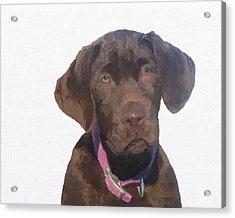 Zippy As A Pup Acrylic Print