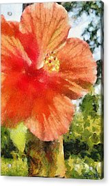 Zoo Flower Acrylic Print by Jeffrey Kolker