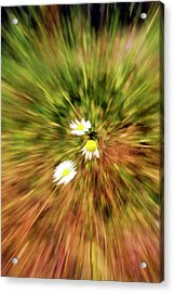 Zooming In Or Zooming Out Acrylic Print by James Steele