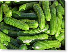 Zucchini Squash Acrylic Print