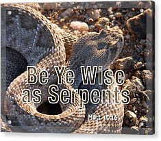 Be Ye Wise As Serpents Acrylic Print