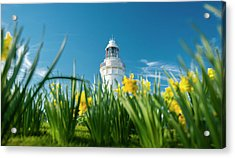 Acrylic Print featuring the photograph Beautiful Table Cape Lighthouse In Tasmania. by Rob D