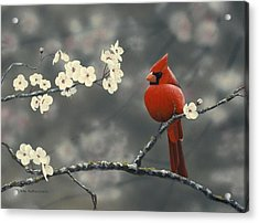 Acrylic Print featuring the painting Cardinal And Blossoms by Peter Mathios