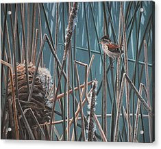 Acrylic Print featuring the painting Cattail Hideaway by Peter Mathios