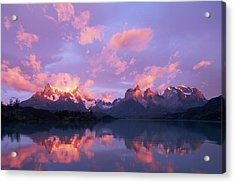Chile, Patagonia, Torres Del Paine Np Acrylic Print by Paul Souders