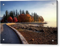 Colorful Autumn Foliage At Stanley Park Acrylic Print