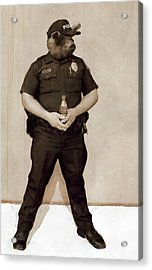 Desert Pig - A Satirical Portrait Acrylic Print