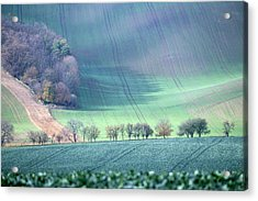 Autumn In South Moravia 1 Acrylic Print