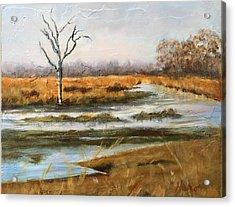 Early Spring On The Marsh Acrylic Print