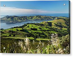 Farmland At Upper Junction, And Otago Acrylic Print by David Wall