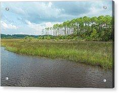 Acrylic Print featuring the photograph Florida Marshland by John M Bailey