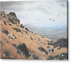 Acrylic Print featuring the painting High Desert Dreams by Peter Mathios