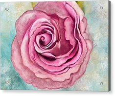 I Have Just Met You, And I Love You Acrylic Print