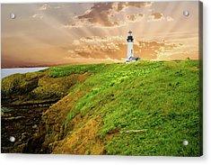 Lighthouse On  Yaquina Head  Acrylic Print