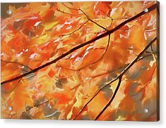 Acrylic Print featuring the photograph Maple Leaves On Fire by Rob Huntley