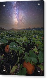Acrylic Print featuring the photograph Pumpkin Patch  by Aaron J Groen