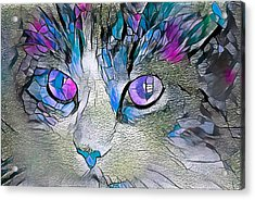 Purple Stained Glass Kitty Acrylic Print