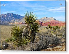 Red Rock Canyon National Conservation Area Acrylic Print