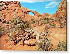 Skyline Arch, Arches National Park Acrylic Print