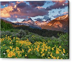Spring Sunset In The Tetons Acrylic Print by Leland D Howard