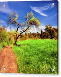 The Path That Lies Ahead Acrylic Print by Kenneth Montgomery