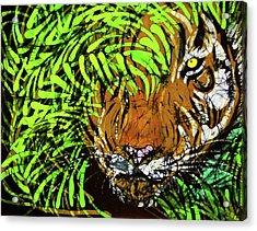Tiger In Bamboo Acrylic Print