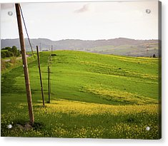 Tuscan Landscapes. Hills In The Spring Acrylic Print