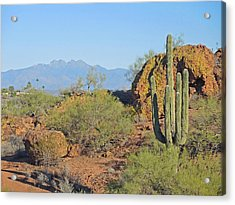 Acrylic Print featuring the photograph View To Four Peaks  by Lynda Lehmann