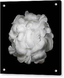 White Ink In Water On Black Background Acrylic Print by Biwa Studio