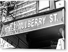 106-8 Mulberry Street Little Italy New York City Acrylic Print