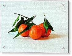 11--01-13 Studio. 3 Clementines Acrylic Print