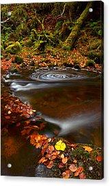 Reelig Glen Acrylic Print